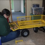 Maggie got the whole cart put together...  it's a great thing... can't wait to get it out in the yard working!