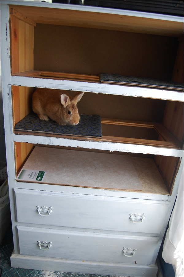 Dresser To Bunny Hutch The Mobile Home Woman