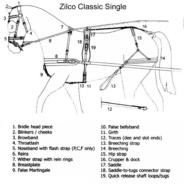 mini horse harness parts  mini  free engine image for user manual download